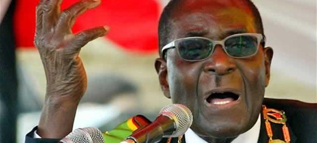 Mugabe-index (3)